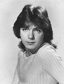220px-The_Partridge_Family_David_Cassidy_1972