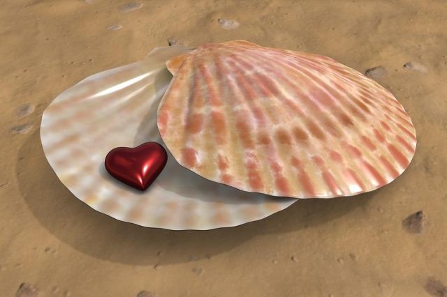 heart-1739914_960_720
